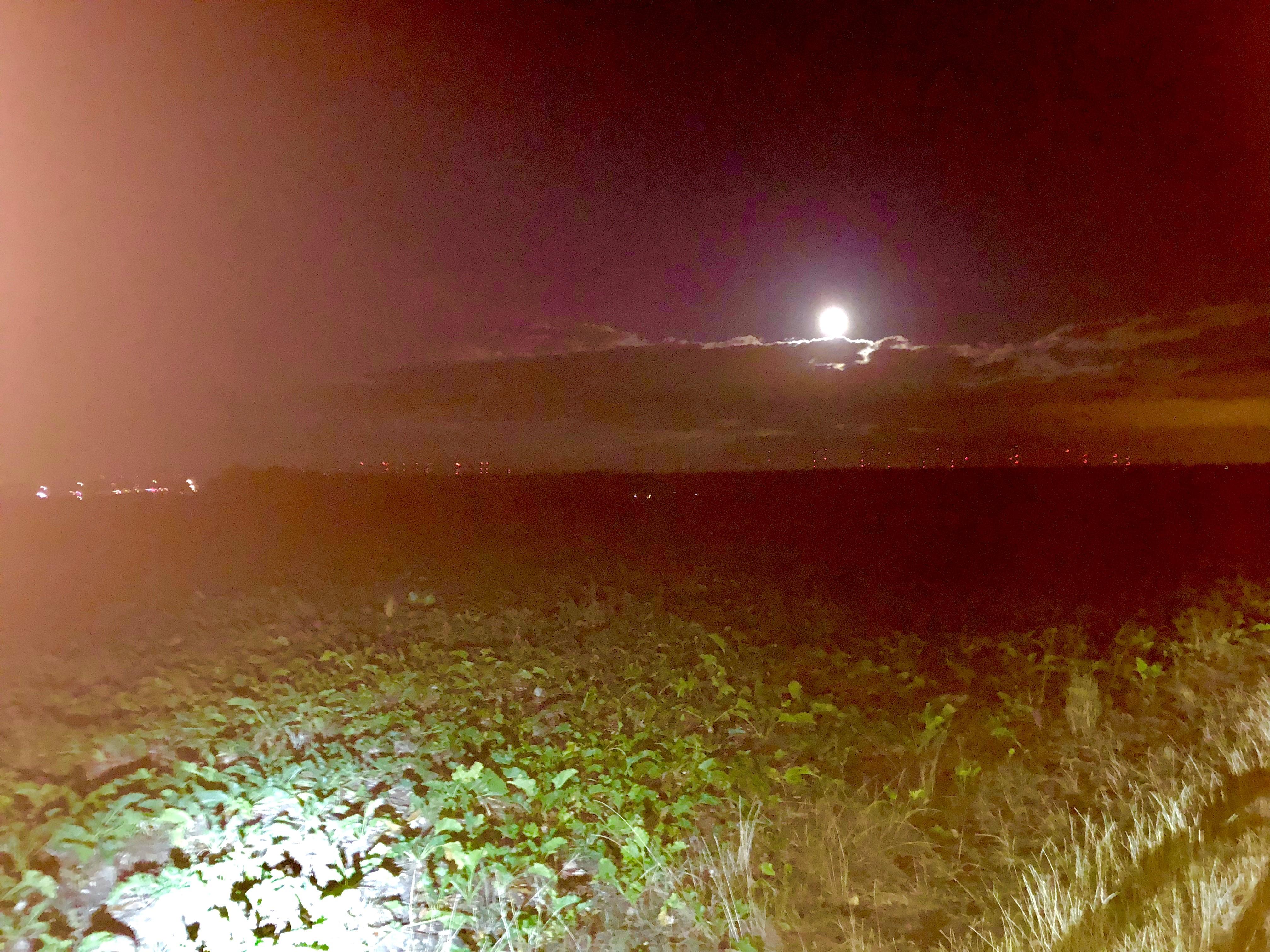 Mondscheintour Vorholz